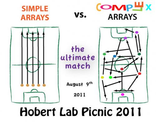 Hobert Lab Picnic 2011 T-shirt