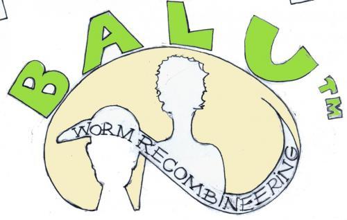Luisa & Baris Fosmid Recombineering Logo